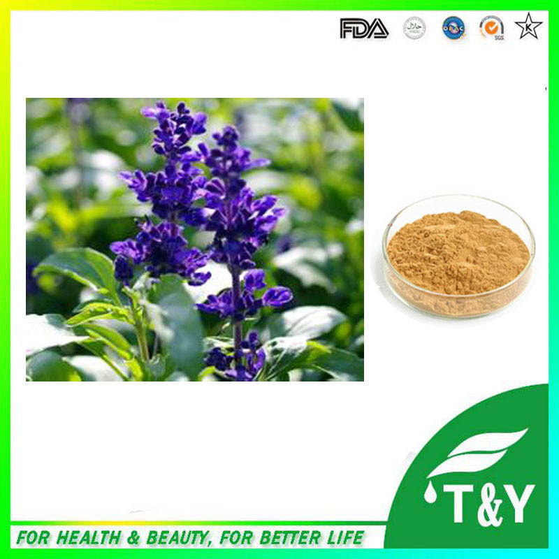 100% Pure Natural Sage Leaf Extract/Carnosic acid 600g/lot<br><br>Aliexpress