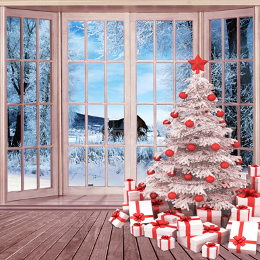 Window winter snowy world christmas backdrops photography backgrounds