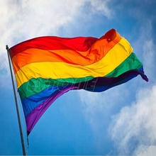 Free Shipping Hot Sale Rainbow Flag 3x5 FT 90x150cm Polyester Lesbian Gay Pride LGBT For Decoration -S127(China (Mainland))