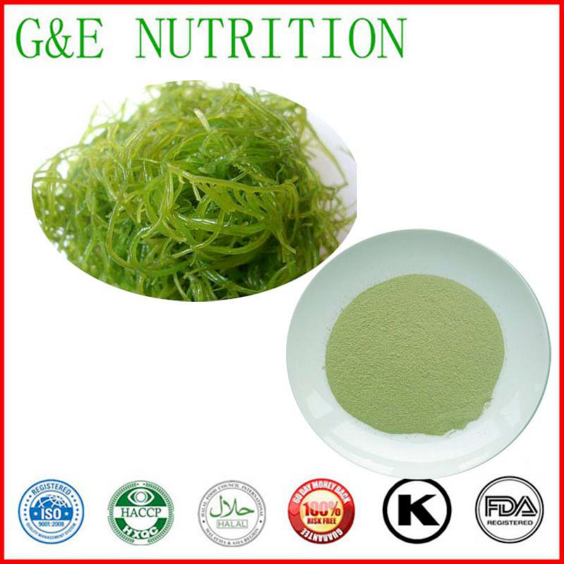 weight loss Seaweed Extract Powder 1KG  GOOD Quality <br><br>Aliexpress