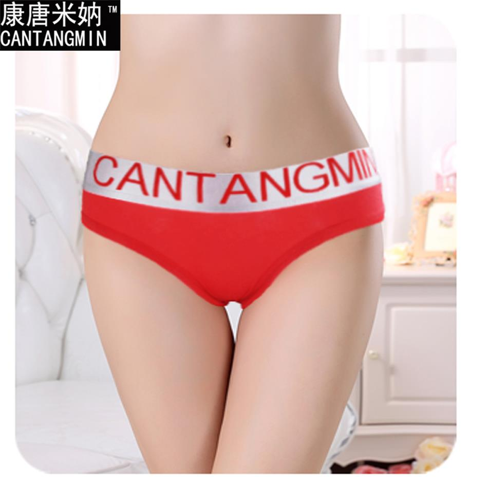 Female underwear cotton breathable bottom sexy panties new silver edge ladies briefs shorts vs secret women lingerie(China (Mainland))
