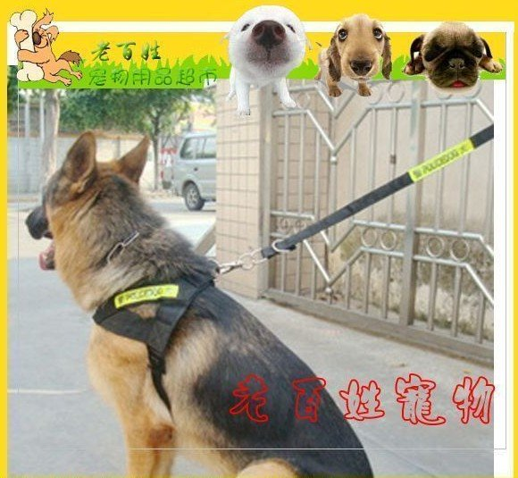 FreeShipping--2010 New Lead Police Reflect Light Chest Harness Pet Clothes Leash Army Green