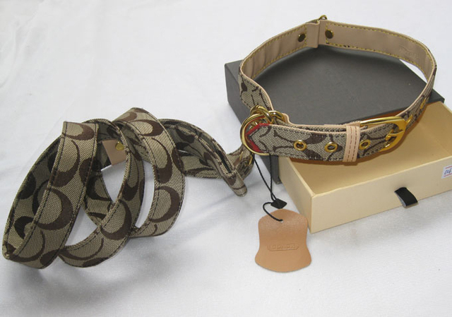 Designer Dog Collar+Leash Set Canvas Pet Leashes Lead With Embroidered  M L Brown