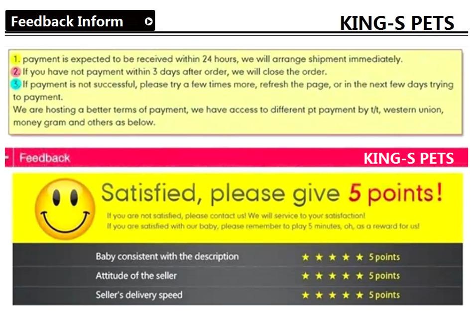 12,feedback inform