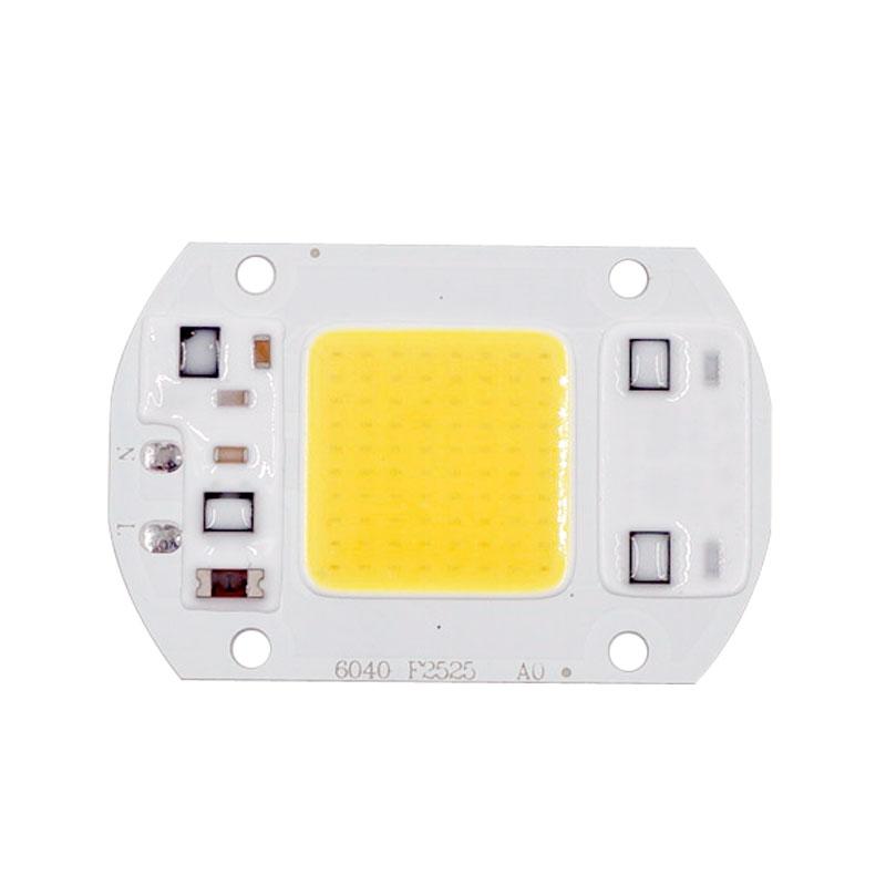 LED COB Bulb No Need Driver 50W 30W 20W 230V 110V Input High Lumen Chip For DIY LED Floodlight Spotlight(China (Mainland))