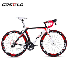 HOT SALE!2015 full carbon costelo lucca road bicycle carbon bike DIY complete bicycle completo bicicletta bicicleta completa(China (Mainland))