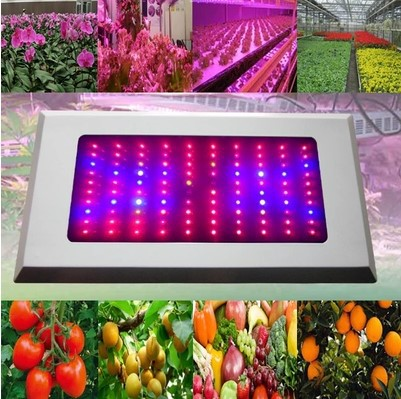 Full Spectrum 300W LED Grow light 300W Lamps For Plants Hidroponia Flowers LED Plant Acuario Indoor<br><br>Aliexpress