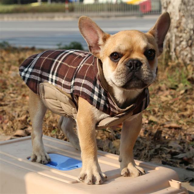DogLemi Waterproof Dog Warm Jacket