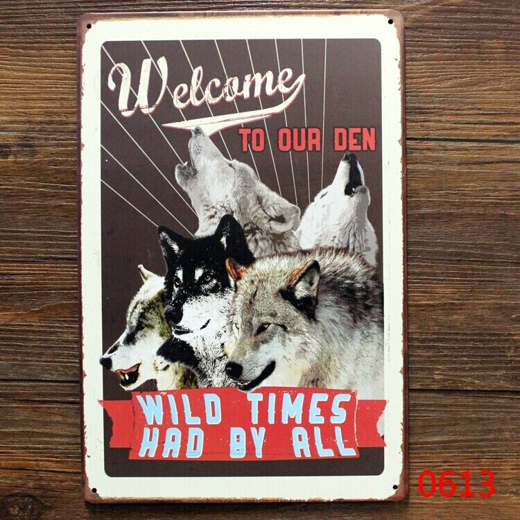 WILD TIMES HAD BY ALL Tin signs Art wall decor House Cafe Bar Vintage Metal signs 20*30cm free shipping(China (Mainland))