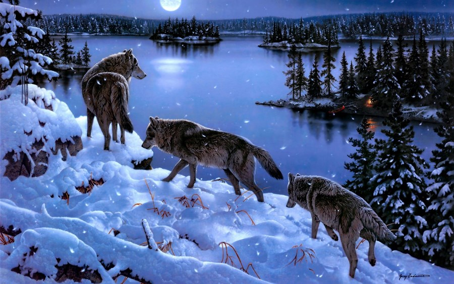 Living room home wall decoration fabric poster wolves winter lake snow trees animal art