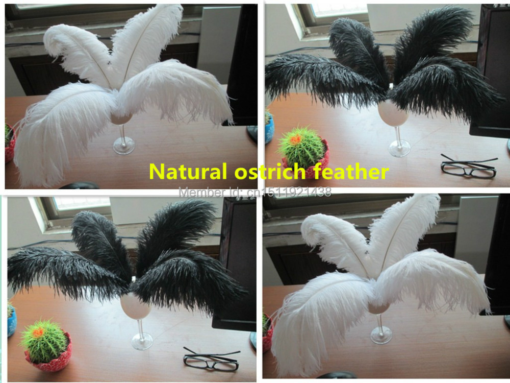 Free shipping Wholesale Featured 50pcs Quality 14-16inch/35-40cm Nature ostrich feather Decoration white/black diy wedding(China (Mainland))