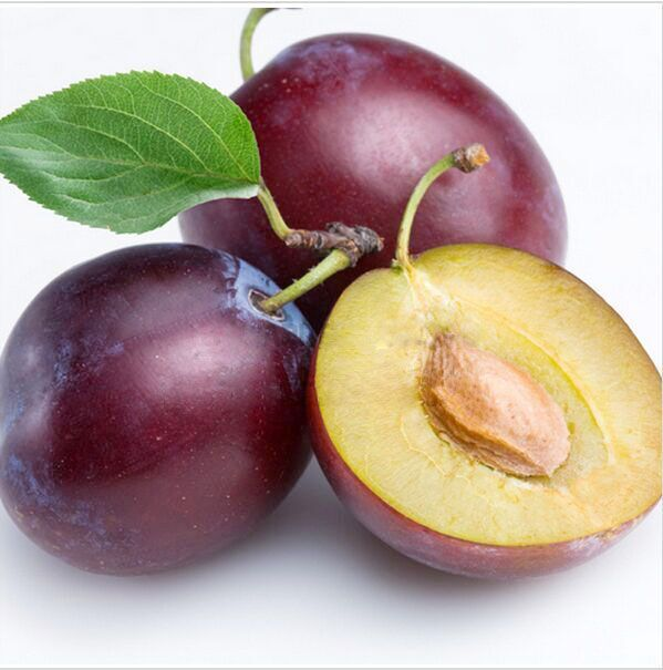 Professional Packs, 10 Seeds/Pack, Delicious Round Plums Fruit Tree Seeds + Good Quality + Mysterious Gift(China (Mainland))