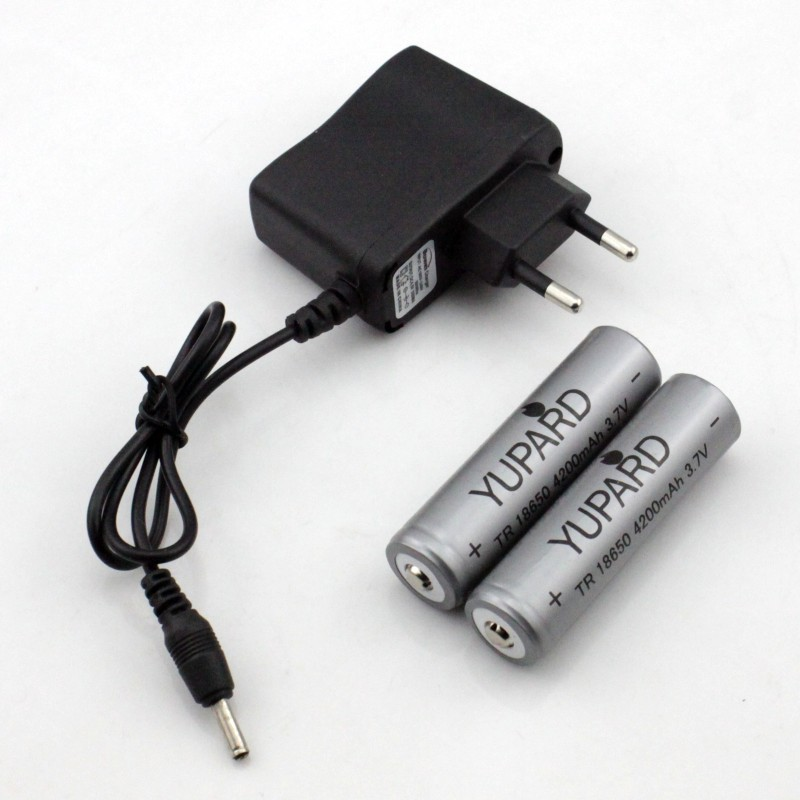 4200mAh 3.7v Rechargeable 18650 Battery + Travel direct EU plug DC Charger - NingBo Yupard Outdoor Co.,Ltd store