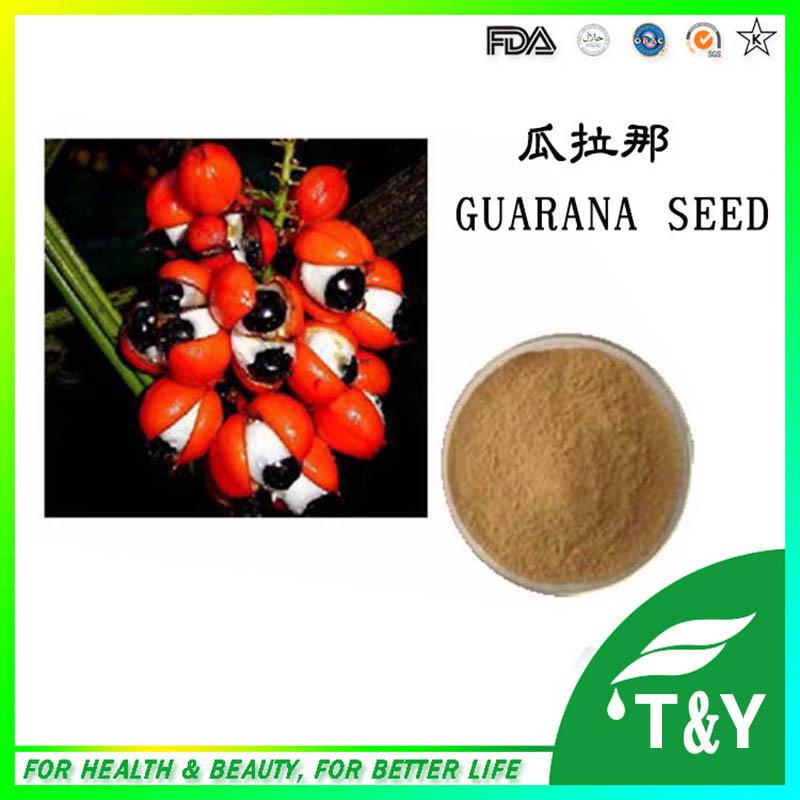 Natural Plant Extract 10% Guarana Seed Powder 800g<br><br>Aliexpress
