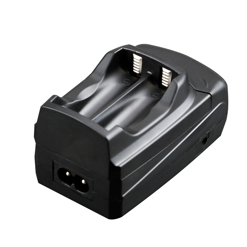Udoli BP-110 BP110 BP 110 Universal Camera Battery Charger Car Adapter for Canon R28 R26 R206 R20 R21 R200 HFR28 HFR200 HFR206