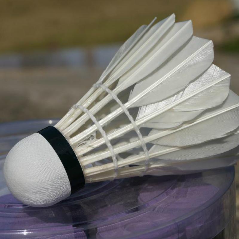 Goose feather badminton 6 training level ball mini tube standard(China (Mainland))