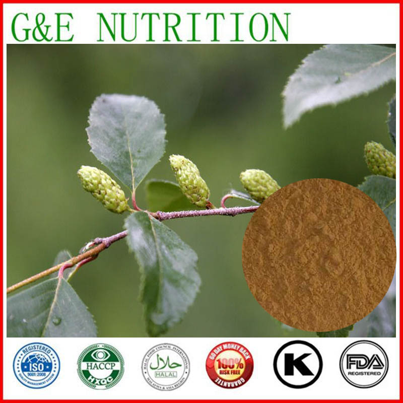 700g Factory direct Alder/ japanese alder/ Alnus/ black alder Extract with free shipping<br><br>Aliexpress
