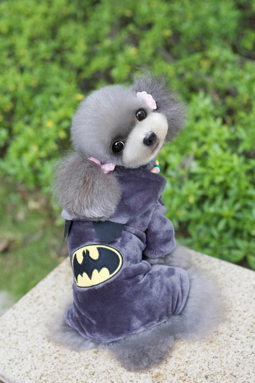 Hot Sale!Fleece Pet Cat Dog Costume Warm Winter Batman Dogs Clothes Coat Jackets Cute Jumpsuit Four Leg Clothing For Dogs(China (Mainland))