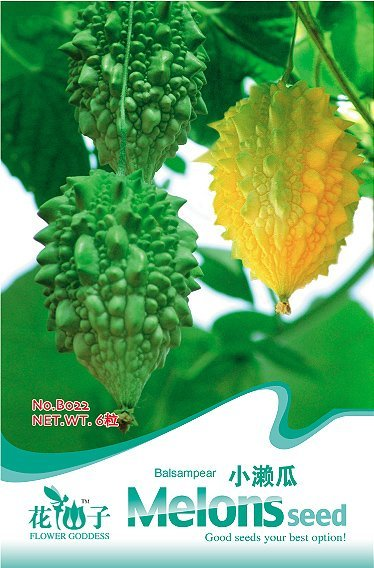 Free Shipping 3 Packs 18 Of Bitter Melon Seed Balsam Pear Seeds,Healthy Green Food B022(China (Mainland))