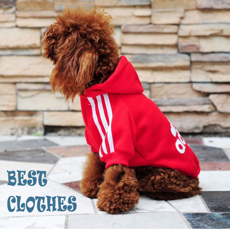 New 2016 Pet dog clothes Coat for dogs Summer Winter clothes for pet dog for Small medium Big dog shirt XS to XXL size(China (Mainland))