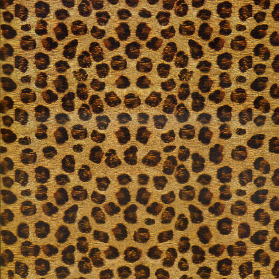 hydro dipping yellow animal skin leopard Water transfer Printing film,M-12742,Aqua Print ,car decoration,Hydrographic FILM(China (Mainland))