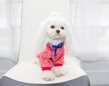 10 шт. собаки кошки толстовки домашнее животное собака cat осень зима sweatershirts щенок пуловер домашнее животное собака cat свитера домашние животные поставки