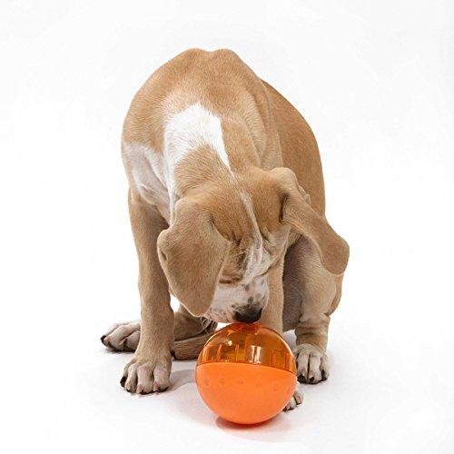5 3 продукты Для Домашних Животных Домашних Животных Умнее Интерактивные IQ Обработать Мяч Игрушка Собака Собака