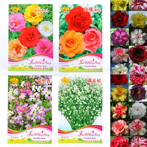 Wholesale Multifarious Ornamental Grow up Flower & Plants Seeds Garden For View Decorate(China (Mainland))