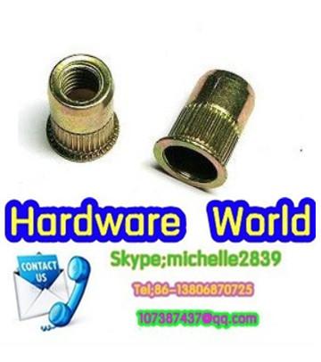 M5 M6 each 500pcs  5mm 6mm Flat Steel Rivet Nut Rivnut Insert Nutsert blind nut fastener<br><br>Aliexpress