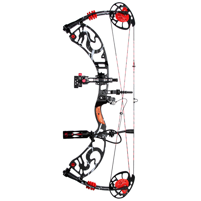 Black version Hunting bow arrow set with excellent design compound bow China archery set hunting compound