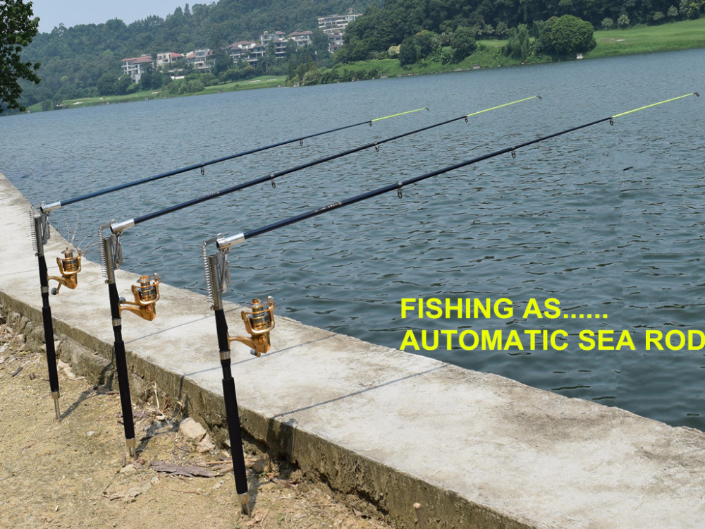 Automatic fishing rod ideal sea river fish lake ebay for Automatic fishing rod