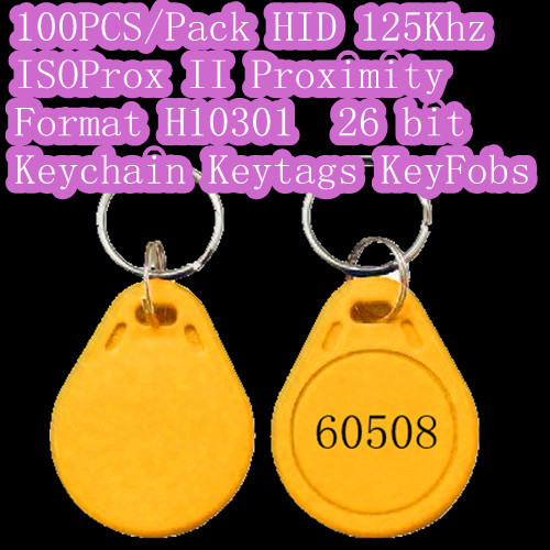 free shipping!100 pcs Proximity Keychains Key Chain Key Ring Non-standard Atypia Abnormal Heterogeneous card tag fob<br><br>Aliexpress