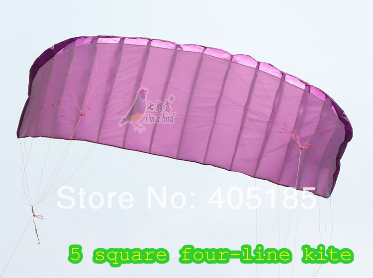 Free Shipping High Quality Four-wire Power Stunt Parafoil Parachute Nylon Sports Beach 5 Square Kite For Professionals(China (Mainland))