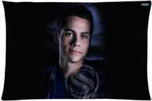 Buy LU Dylan O'Brien Custom Zippered Rectangle Pillowcases Pillow Cover Cases Size 35x45cm (One Side) for $4.05 in AliExpress store