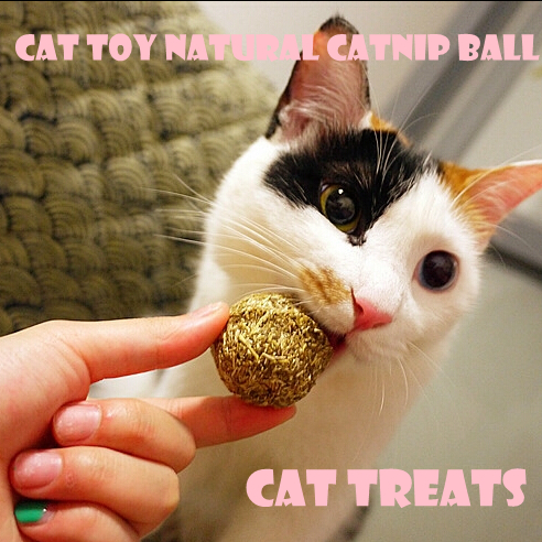 Free Shipping, Cat Toy Natural Catnip Ball, Menthol Flavor, Cat Treats, 100% Edible Cats-go-crazy Treats(China (Mainland))