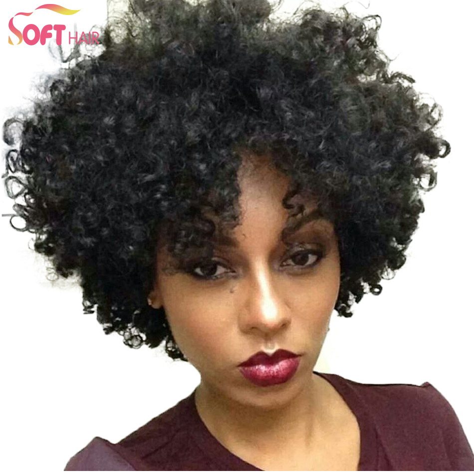 Afro Curly Wig 13
