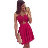 New Lace Women Dress 2015 Sexy Women Gauze Mesh Lace Dress Summer Sleeveless Dress Slim Party Mini Hot Pink Dress KH950127