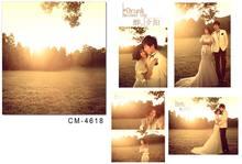 Wedding Backdrops Photography Photo Studio Backgrounds Romantic Fotografia Vinyl Backdrops For Photography