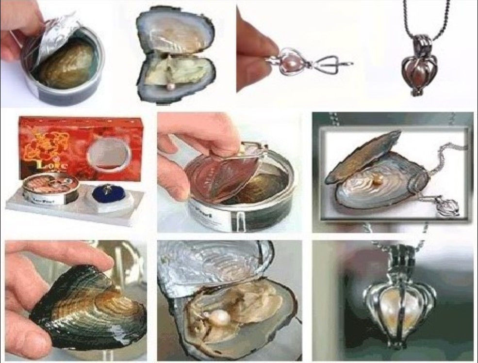 FREE SHIPPING>>>@@ > 10 Set Love Wish Pearl Necklace Set Oyster Drop Pendant(China (Mainland))