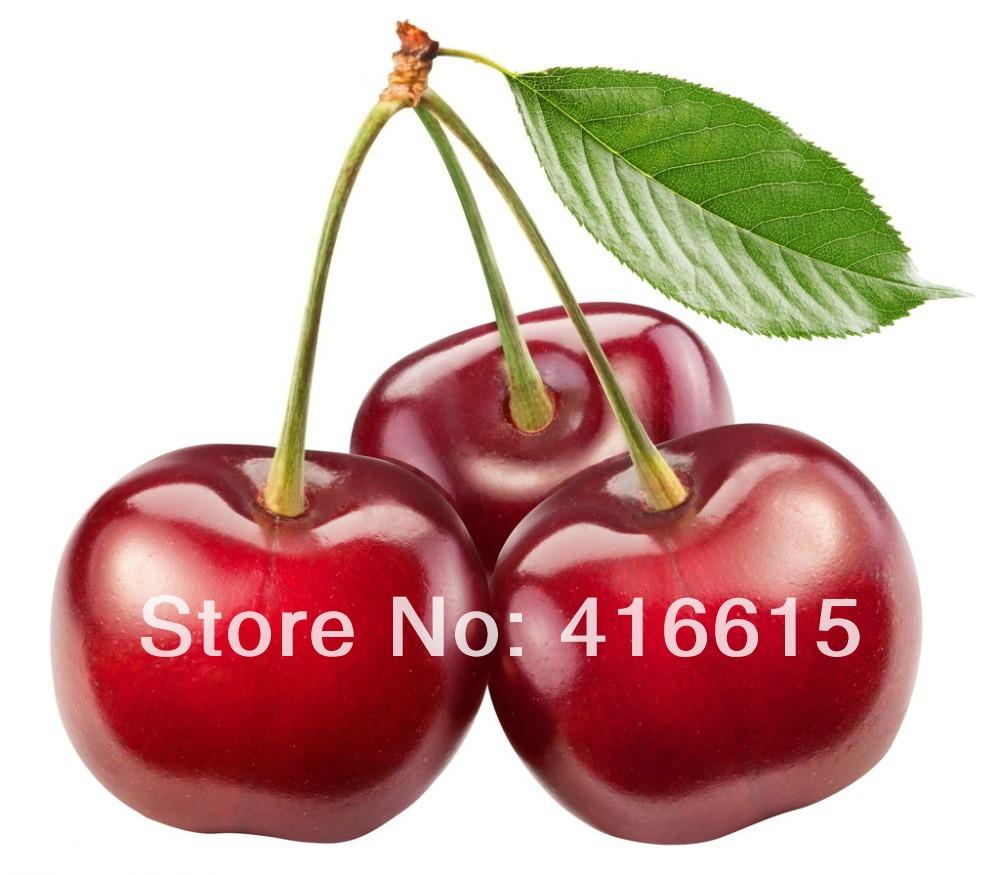 50 Sweet Bing Cherry Seeds,Rare heirloom Prunus Avium, Tasty Fruit Seeds * E-Z TO GROW *Red Cherries,(China (Mainland))