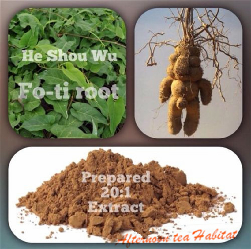 100% Pure & Organic HE SHOU WU (Fo-Ti) 20: 1 extract powder 100g 3.52 oz AMAZING SUPERFOOD!(China (Mainland))