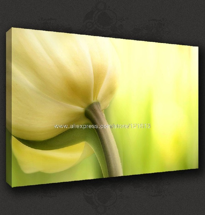 Cream Yellow Tulip Contemporary Canvas Pop Art Many To Choose From Oil Paintings Famous Realistic Paintings Wall Impressi(China (Mainland))