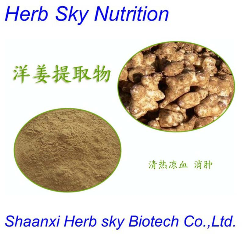 High Quality organic Jerusalem Artichoke Herb Extract 600g/lot