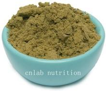 free shipping GMP hemp protein powder 500g per bag