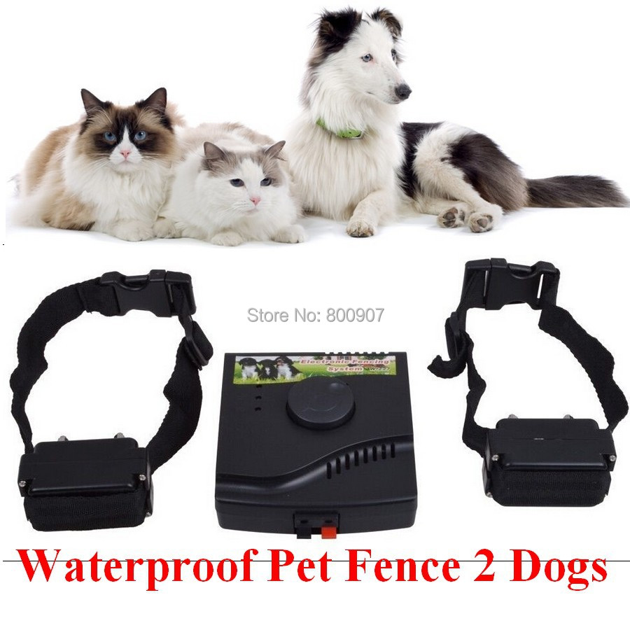Electric Fence For Dogs No Collar