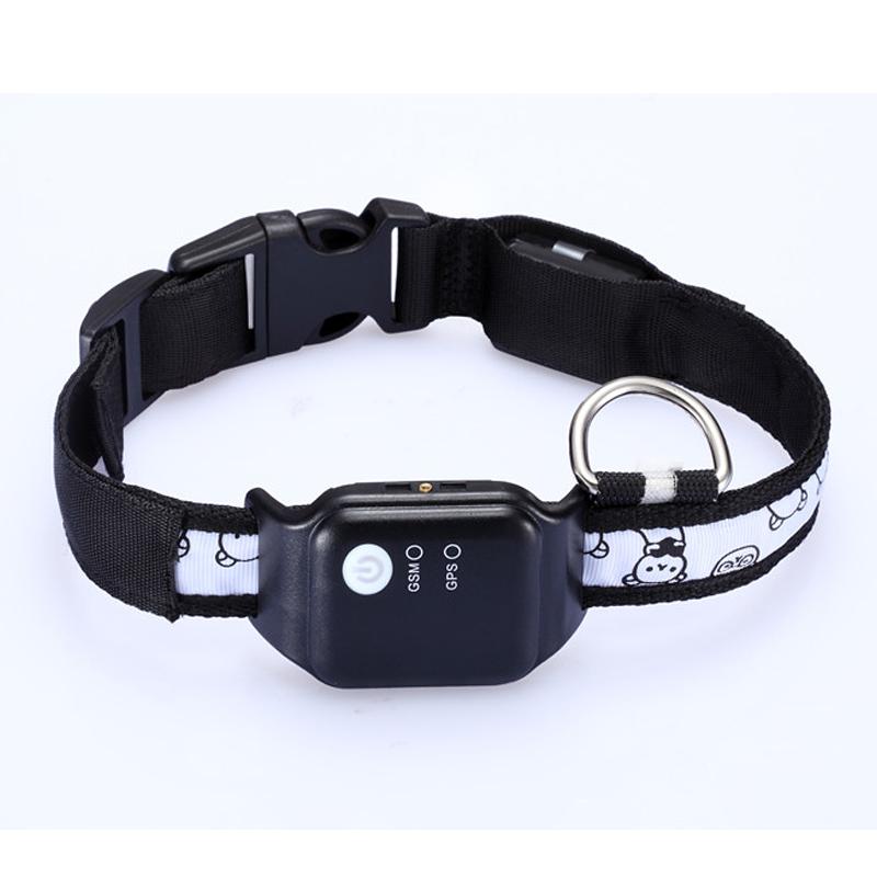 Ios Dog Tracker