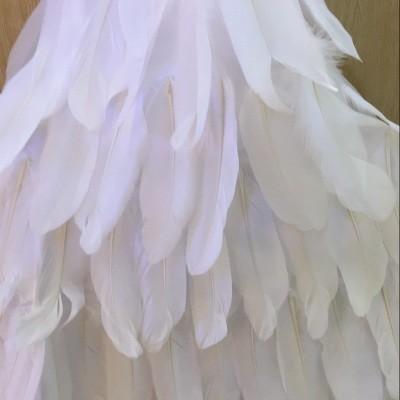 Скидки на Рождество птица чик мультфильм принцесса платье танец одежды женский производительность одежда ангельские крылья перо юбки платья