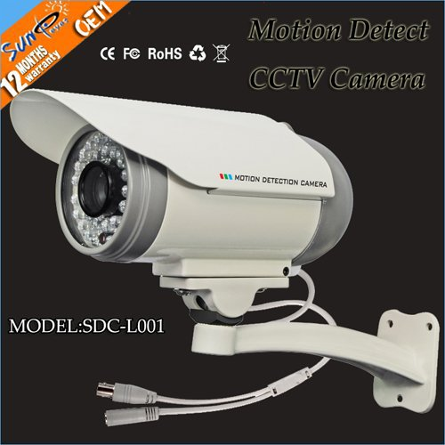 Wholesale 10pcs/lot Eyes Outdoor CCTV Camera DVR support TF/Micro SD Card and Monition Detection SDC-L001(China (Mainland))