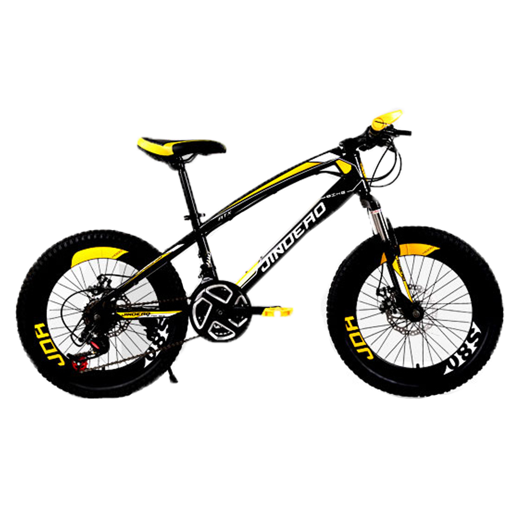 20inch 21 Speed Fat Bike Mountain Bike Bicycle Child High-Carbon Steel Double Disc Brake Fat Tire Bike Children Bicycle Kid Bike(China (Mainland))