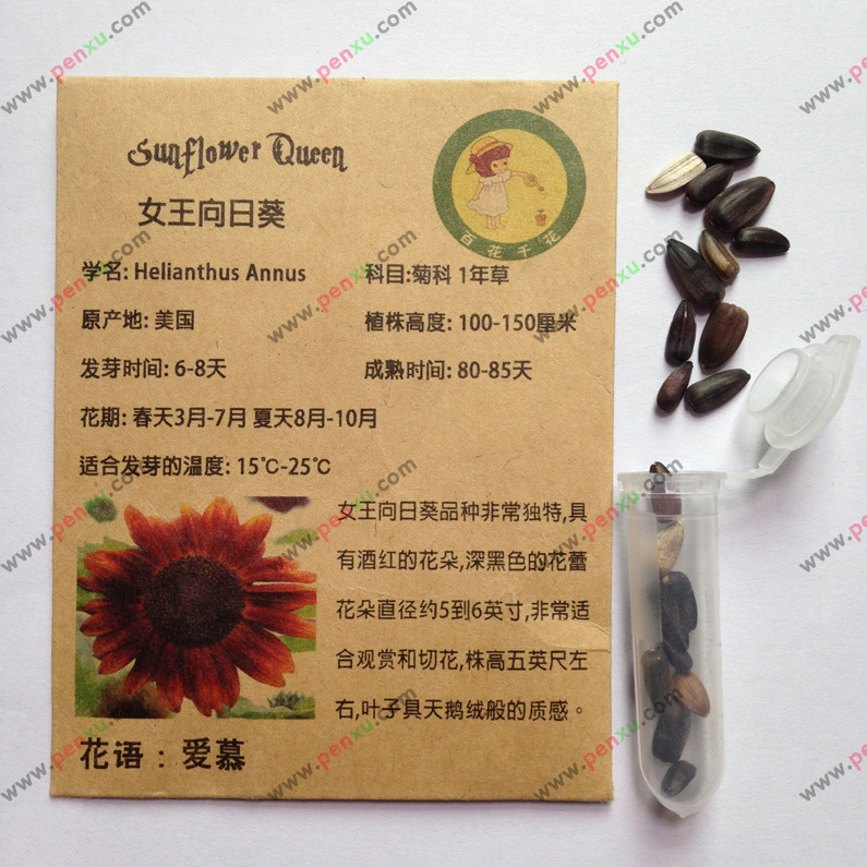 Red wine queen sunflower seeds,Simple good seed red sunflower seed,this is100% correct seed,have planting instructions,15pcs/bag(China (Mainland))